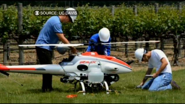 Unmanned Drones Used For Spraying To Better Assist Crop