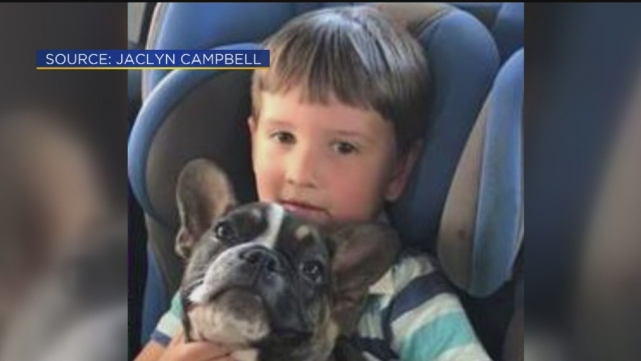 Caught On Camera French Bulldog Puppy Stolen In Broad Daylight Cbs Sacramento